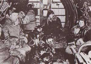 US troops enroute to France with sled dogs - World War II