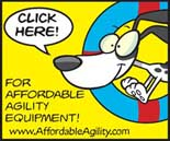 Affordable Agility