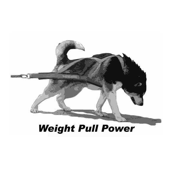Weight Pull Power - Sebastian