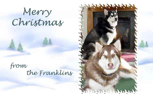 Merry Christmas from The Franklins